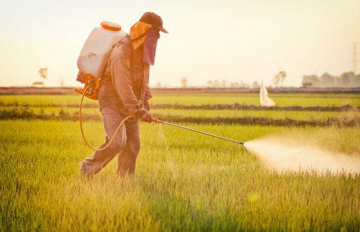 Maroc : bientôt une loi pour contrôler usage des pesticides agricoles