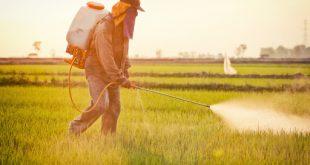 La consommation de pesticides agricoles en Espagne atteint des sommets