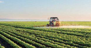 Le Maroc multipliera par 2 son PIB agricole d'ici 2030