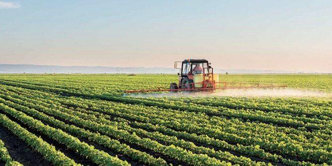المغرب يضاعف الناتج المحلي الإجمالي الزراعي بحلول عام 2030