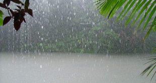 Les pluies récentes rallument lueur espoir agriculteurs