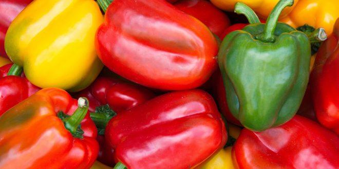 Des poivrons marocains sont retirés du marché tchèque pour excès de pesticides