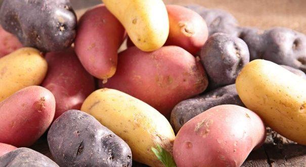 Pulpe de pomme de terre rouge pain sans gluten