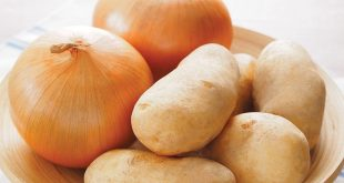 Les oignons du Maroc et les pommes de terre d'Égypte dérangent