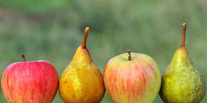 Les pommes et poires belges séduisent de plus en plus les Marocains
