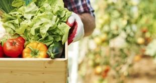 Produits agricoles: Baisse de la consommation à venir