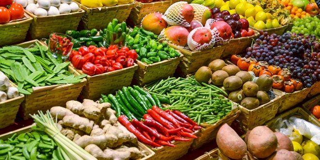 Tanger-Tétouan-Al-Hoceima-770.000-tonnes-de-légumes-pour-cette-saison-agricole