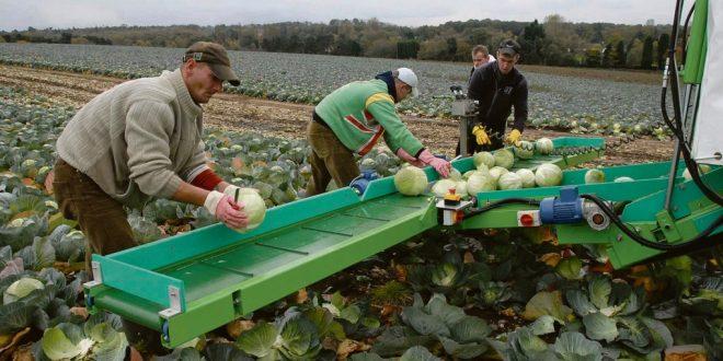 France-Les-agriculteurs-manifestent-pour-la-venue-des-saisonniers-agricoles