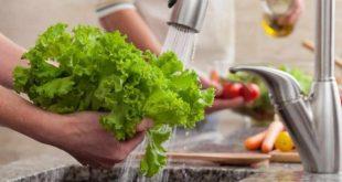 Salade nettoyage par ultrasons pourrait réduire les cas intoxication alimentaire