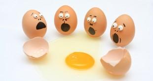 Le Saviez-vous? Les œufs de poule….