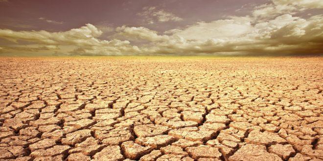 الجفاف في المغرب: المزارعون يناشدون الحكومة على إعلانه