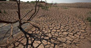 Maroc : les investissements pour le climat dépassent 111 MMDH