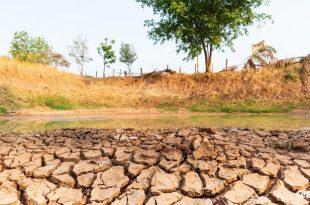 FAO: Le Maroc doit se préparer au manque d'eau