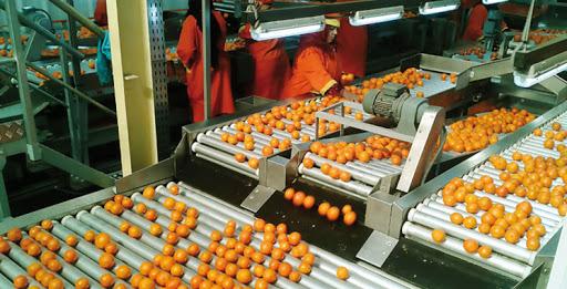 Agroalimentaire: 5100 unités travaillent sans autorisation au Maroc