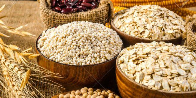 Agriculture Tunisie : Des semences gratuites de haute qualité seront distribuées aux petits agriculteurs