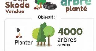 Skoda a respecté son engagement et a planté un arbre à chaque voiture vendue