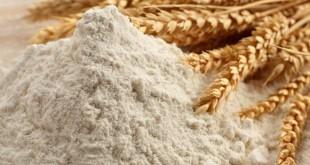 Subventions pour la farine de blé tendre nationale