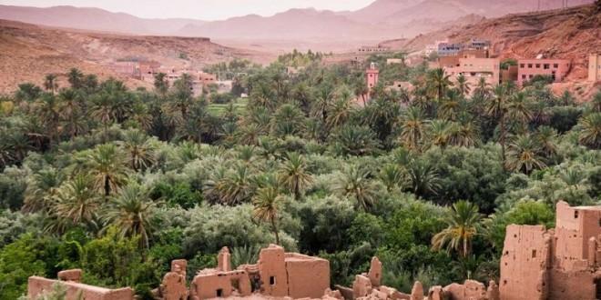 Systèmes oasiens: Mise en place d'outils de gestion