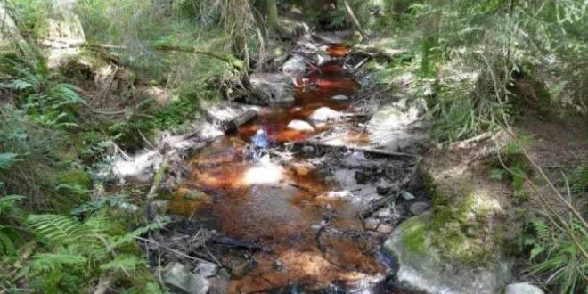 Les déchets des usines de trituration huile olive posent problème à Béni Mellal