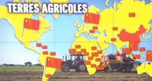 """Vidéo: la Chine """"l'empire des terres agricoles"""""""