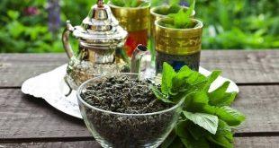 Le-Maroc-se-préparerait-il-à-cultiver-son-propre-thé