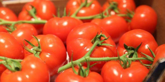 Tomates le Maroc devient le 5ème fournisseur Ukraine
