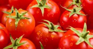 La tomate est incluse dans le traitement contre la maladie de Parkinson