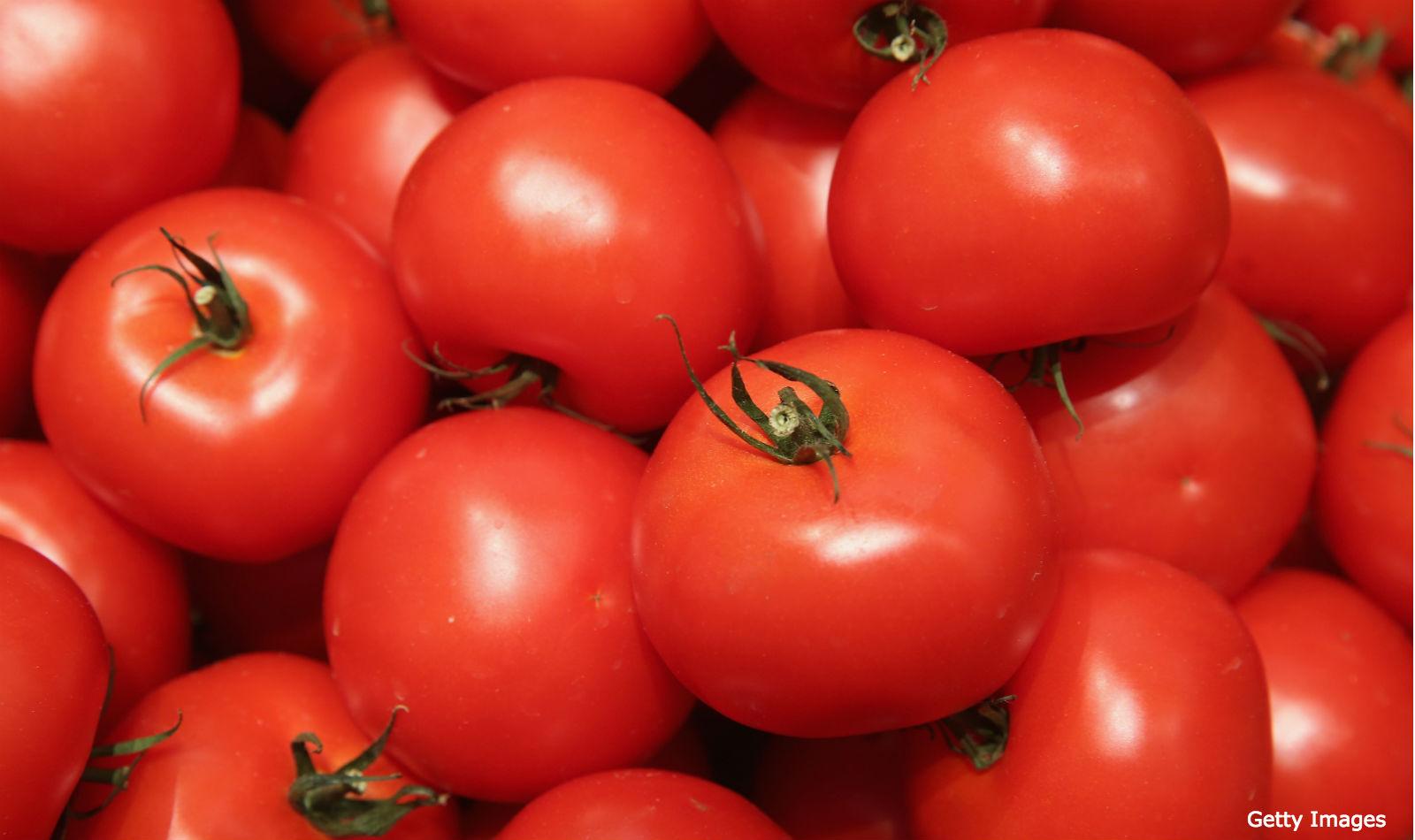 tomates les exportations vers l 39 ue sont rest es stables
