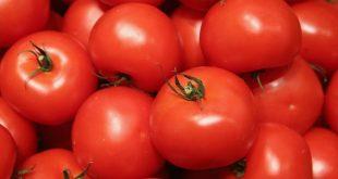 La Russie menace boycotter tomates Arménie virus