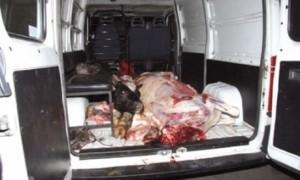 Camion non réfrigéré transportant la viande