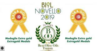 Huile d'olive : La Tunisie reçoit la médaille Extra Gold en Italie lors du concours Biol Novello