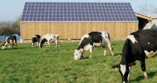 تارودانت: إنجي تدمج الطاقة الشمسية في الزراعة المروية