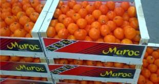 Usurpation de statut de producteur marocain pour accéder au marché russe