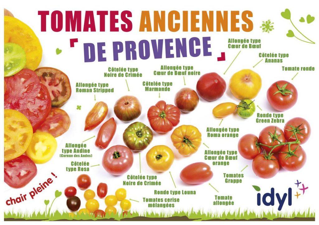 Idyl : Les tomates anciennes à l'honneur